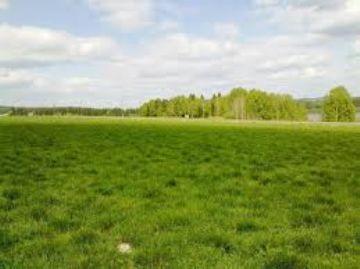 Изображение - Особенности аренды земли сельхозназначения у частных лиц и государства zemli-1
