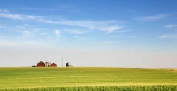 Изображение - Особенности аренды земли сельхозназначения у частных лиц и государства Depositphotos_5732746_l-2015-360x186