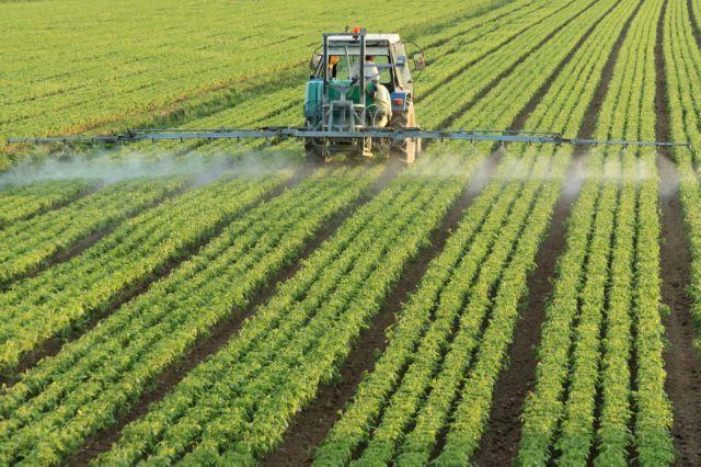 земля в аренду под сельское хозяйство