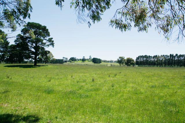 земельные участки неразграниченной государственной собственности