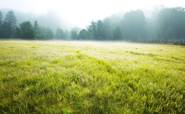 налог на землю в московской области