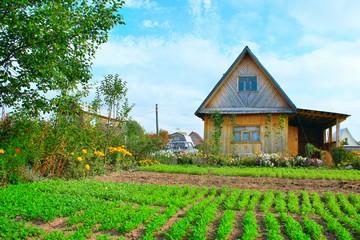 Земли поселений земли населенных пунктов для индивидуального дачного строительства