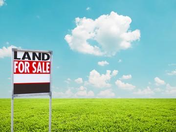 покупка земли у администрации сельского поселения