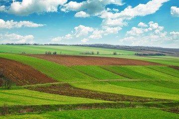 Отказ от преимущественного права покупки земель сельхозназначения