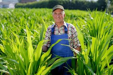 отказ от права покупки земли сельхозназначения