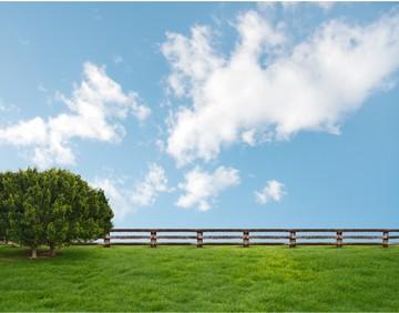 Приватизация земельного участка в садоводстве: необходимые документы для регистрации в товариществе по членской или садовой книжке, если есть дом