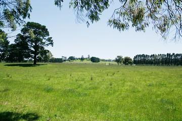 Порядок предоставления земельного участка без торгов