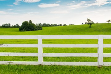бессрочное пользование земельными участками